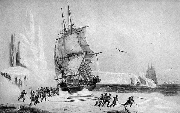В Антарктиде открыта Земля Адели