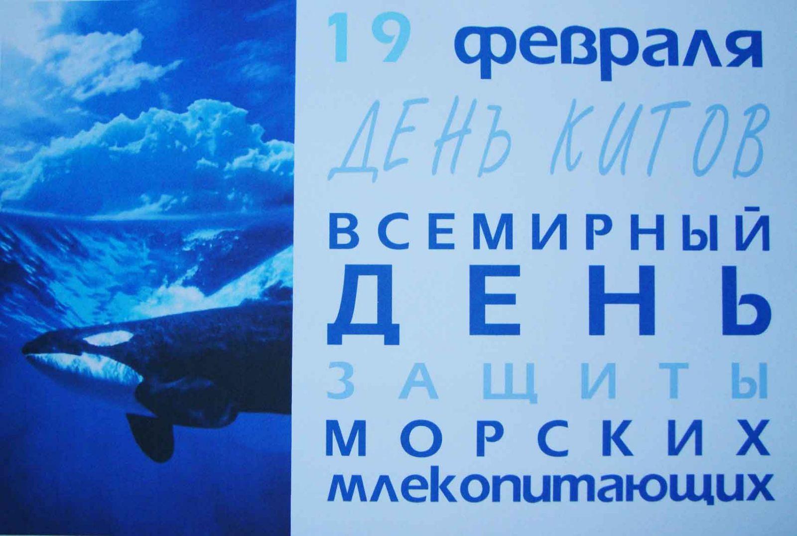 День защиты китов.