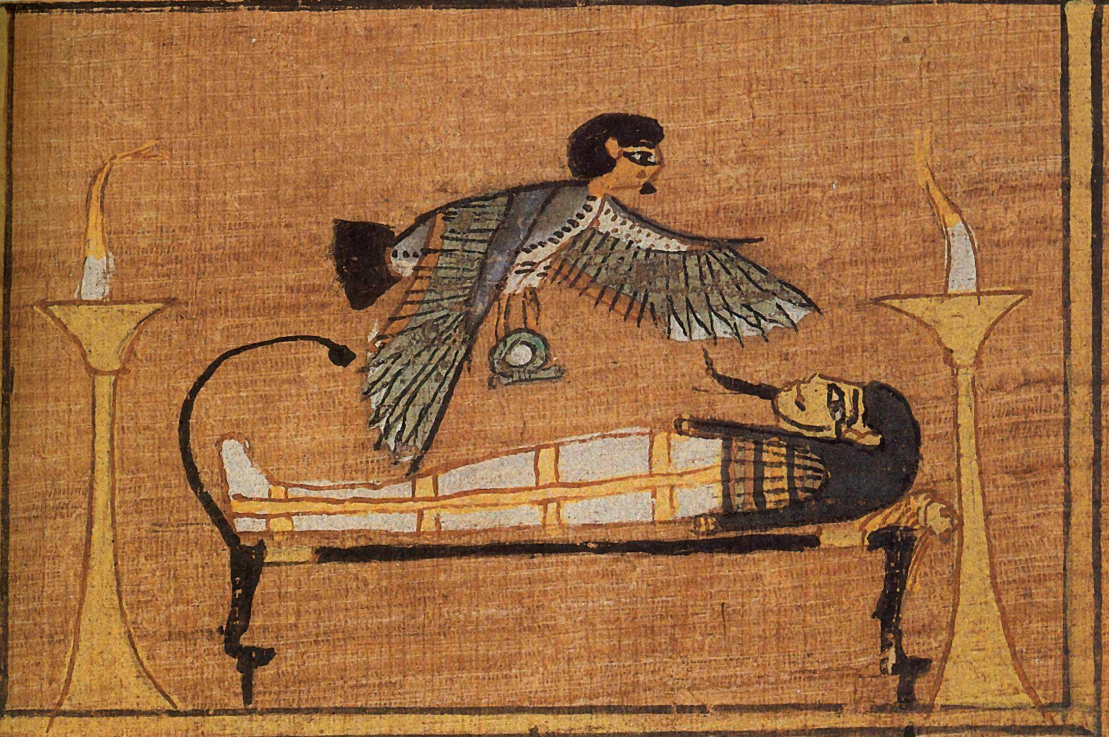 Во время археологических раскопок была найдена мумия