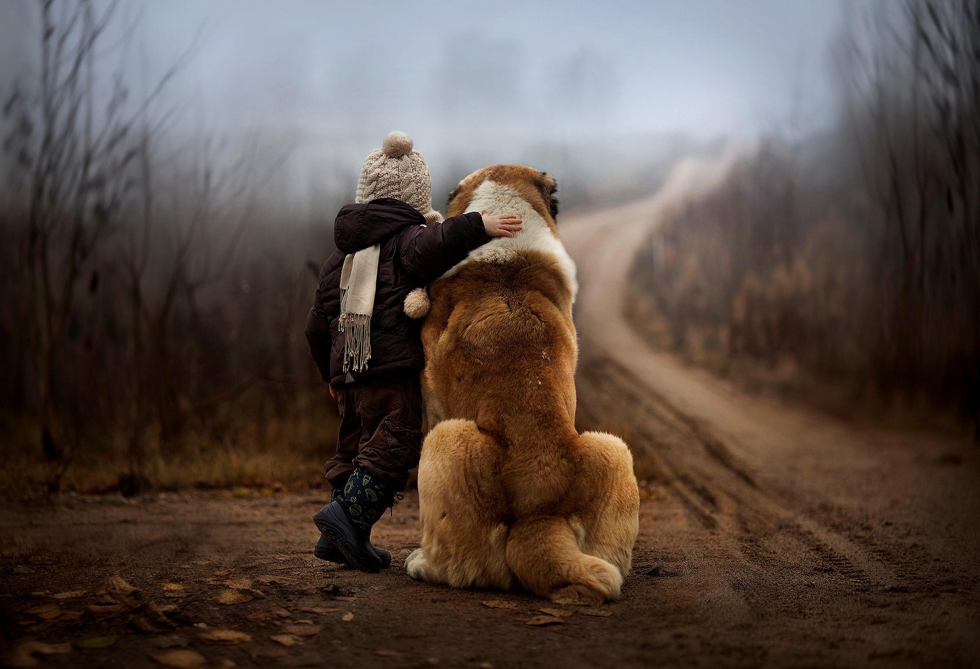 попробовать трогательные фото о любви артист себе уверен