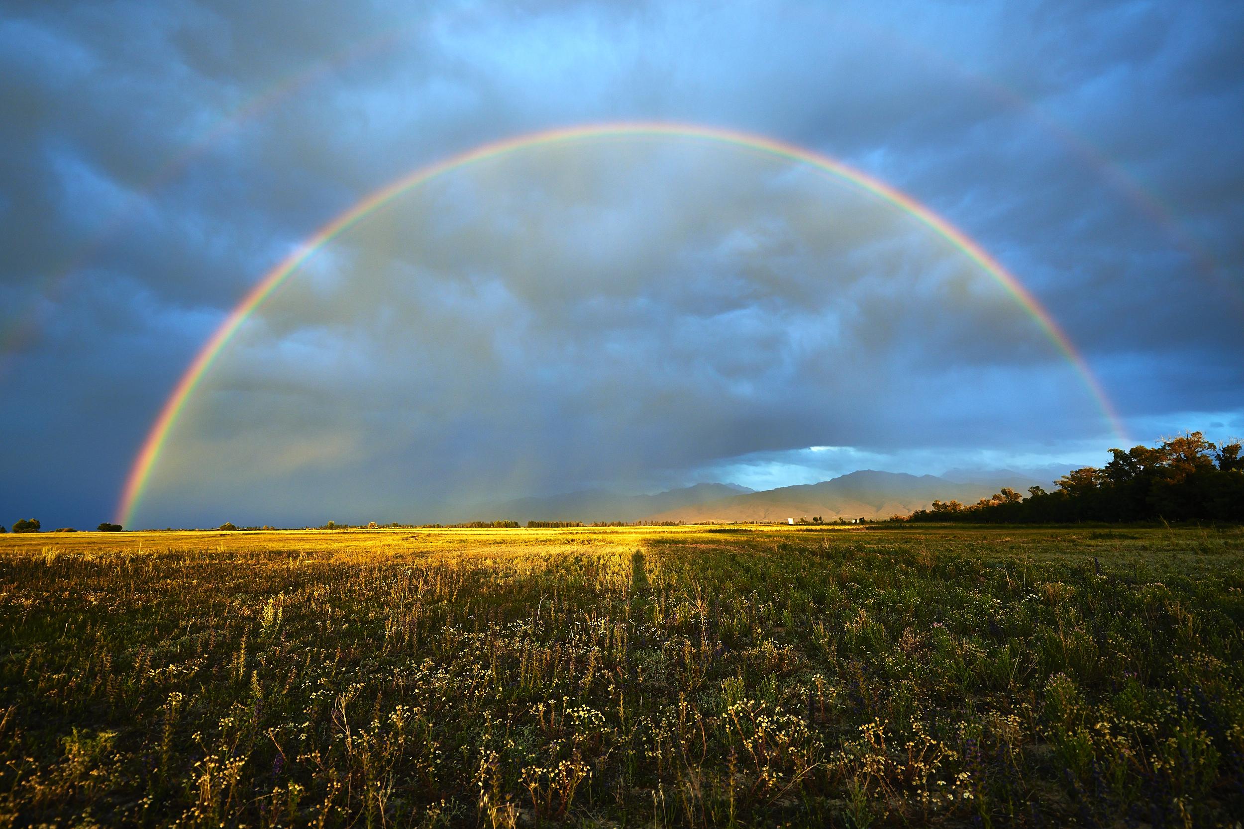 качественная фото радуги после дождя одну