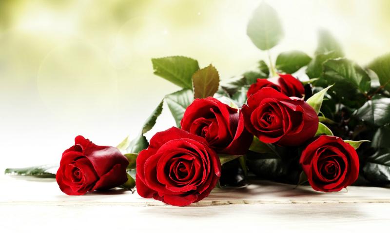 Музыкальное поздравление с днем рождения роза, картинки трамп