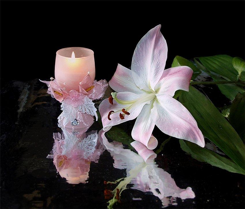 что картинки цветок лилии и свеча доверяют