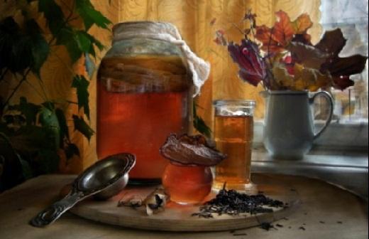 чайный гриб использование