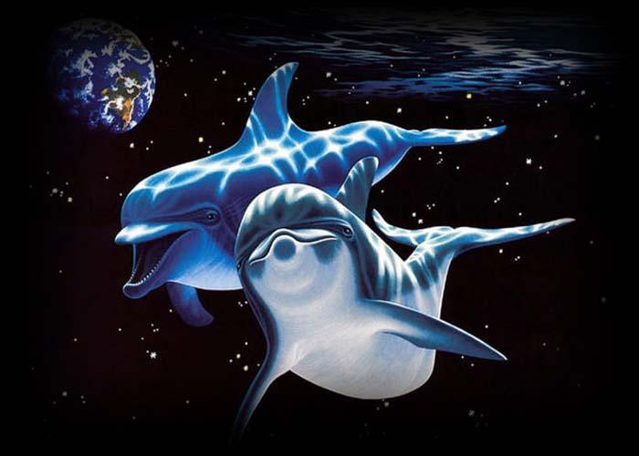 день китов и дельфинов