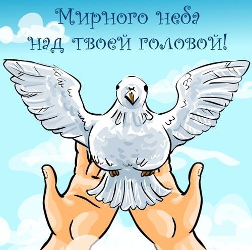 «Врачи мира за мир»