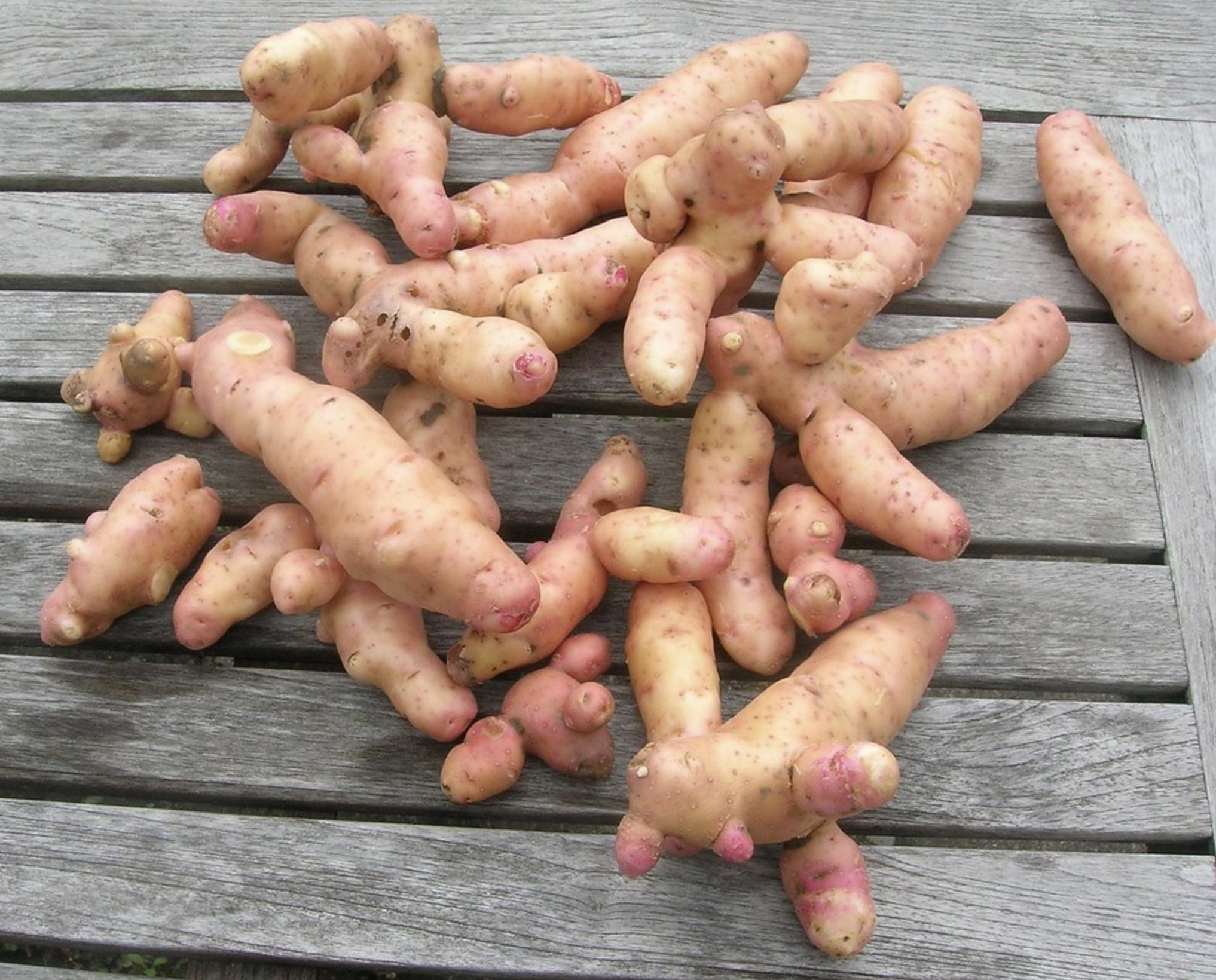 Яблочный картофель