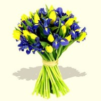863-purple_iris_yellow_tulips_bouquet.jpg