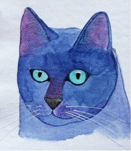 blue-kitty