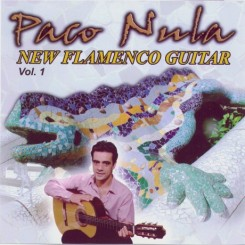 new-flamenco-guitar-1