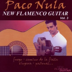 new-flamenco-guitar-3