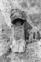 curtis_-_apache_babe_in_carrier