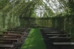 new-zealand-tree-church