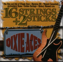 16-strings---2-sticks---front