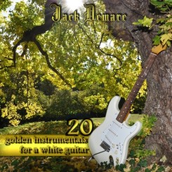 20-golden-instrumentals-for-a-white-guitar